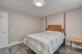 Photo 26: 79 Rundlefield Close NE in Calgary: Rundle Detached for sale : MLS®# A1040501