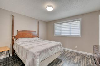 Photo 21: 79 Rundlefield Close NE in Calgary: Rundle Detached for sale : MLS®# A1040501