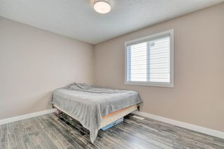 Photo 20: 79 Rundlefield Close NE in Calgary: Rundle Detached for sale : MLS®# A1040501