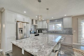 Photo 12: 79 Rundlefield Close NE in Calgary: Rundle Detached for sale : MLS®# A1040501