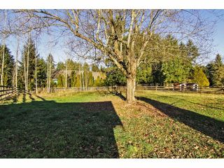 "Photo 20: 24697 48B Avenue in Langley: Salmon River House for sale in ""STRAWBERRY HILLS"" : MLS®# F1326525"