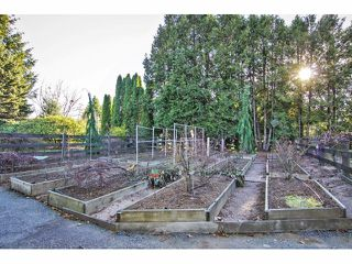 "Photo 18: 24697 48B Avenue in Langley: Salmon River House for sale in ""STRAWBERRY HILLS"" : MLS®# F1326525"