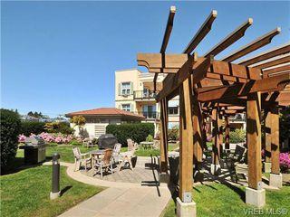 Photo 19: 404 1620 McKenzie Ave in VICTORIA: SE Lambrick Park Condo Apartment for sale (Saanich East)  : MLS®# 706085