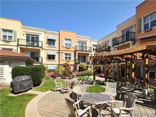 Photo 20: 404 1620 McKenzie Ave in VICTORIA: SE Lambrick Park Condo Apartment for sale (Saanich East)  : MLS®# 706085
