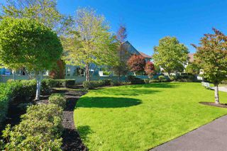 "Photo 20: 45 1255 RIVERSIDE Drive in Port Coquitlam: Riverwood Townhouse for sale in ""RIVERWOOD GREEN"" : MLS®# R2004317"