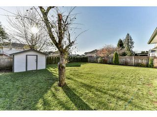 "Photo 17: 15490 91A Avenue in Surrey: Fleetwood Tynehead House for sale in ""BERKSHIRE PARK"" : MLS®# R2016214"