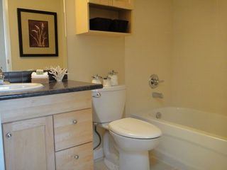 Photo 9: 3064 SMITH Ave: Central BN Home for sale ()  : MLS®# V862363