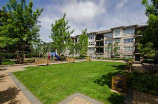 """Photo 15: 114 6828 ECKERSLEY Road in Richmond: Brighouse Condo for sale in """"SAFFRON"""" : MLS®# R2169537"""