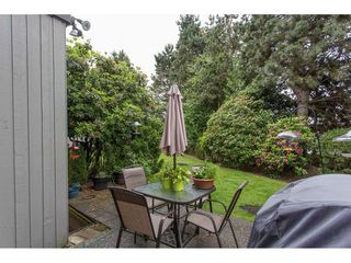 "Photo 19: 11 32917 AMICUS Place in Abbotsford: Central Abbotsford Townhouse for sale in ""PINE GROVE TERRACE"" : MLS®# R2207591"