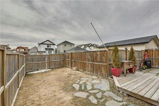 Photo 26: 104 COPPERSTONE Circle SE in Calgary: Copperfield House for sale : MLS®# C4179675