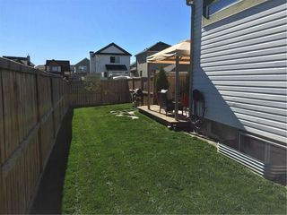 Photo 27: 104 COPPERSTONE Circle SE in Calgary: Copperfield House for sale : MLS®# C4179675