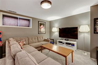 Photo 35: 104 COPPERSTONE Circle SE in Calgary: Copperfield House for sale : MLS®# C4179675