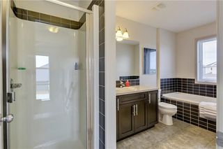 Photo 9: 104 COPPERSTONE Circle SE in Calgary: Copperfield House for sale : MLS®# C4179675