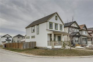 Photo 38: 104 COPPERSTONE Circle SE in Calgary: Copperfield House for sale : MLS®# C4179675