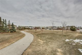 Photo 41: 104 COPPERSTONE Circle SE in Calgary: Copperfield House for sale : MLS®# C4179675