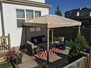 Photo 24: 104 COPPERSTONE Circle SE in Calgary: Copperfield House for sale : MLS®# C4179675