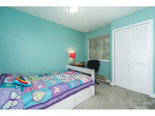 "Photo 16: 19 3087 IMMEL Street in Abbotsford: Central Abbotsford Townhouse for sale in ""Clayburn Estates"" : MLS®# R2264675"