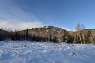 """Photo 17: 7 3000 DAHLIE Road in Smithers: Smithers - Rural Land for sale in """"Mountain Gateway Estates"""" (Smithers And Area (Zone 54))  : MLS®# R2280384"""