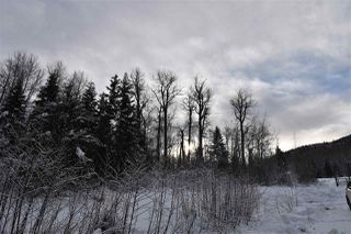 """Photo 22: 7 3000 DAHLIE Road in Smithers: Smithers - Rural Land for sale in """"Mountain Gateway Estates"""" (Smithers And Area (Zone 54))  : MLS®# R2280384"""