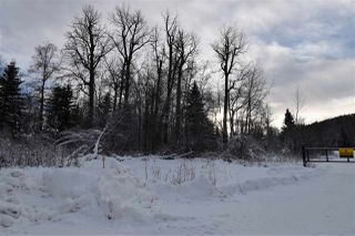 """Photo 25: 7 3000 DAHLIE Road in Smithers: Smithers - Rural Land for sale in """"Mountain Gateway Estates"""" (Smithers And Area (Zone 54))  : MLS®# R2280384"""