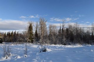 """Photo 20: 7 3000 DAHLIE Road in Smithers: Smithers - Rural Land for sale in """"Mountain Gateway Estates"""" (Smithers And Area (Zone 54))  : MLS®# R2280384"""