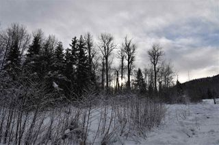 """Photo 23: 7 3000 DAHLIE Road in Smithers: Smithers - Rural Land for sale in """"Mountain Gateway Estates"""" (Smithers And Area (Zone 54))  : MLS®# R2280384"""
