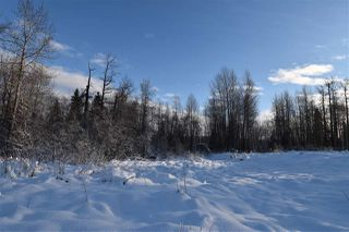 """Photo 16: 7 3000 DAHLIE Road in Smithers: Smithers - Rural Land for sale in """"Mountain Gateway Estates"""" (Smithers And Area (Zone 54))  : MLS®# R2280384"""