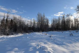 """Photo 19: 7 3000 DAHLIE Road in Smithers: Smithers - Rural Land for sale in """"Mountain Gateway Estates"""" (Smithers And Area (Zone 54))  : MLS®# R2280384"""