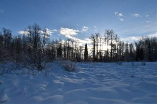 """Photo 14: 7 3000 DAHLIE Road in Smithers: Smithers - Rural Land for sale in """"Mountain Gateway Estates"""" (Smithers And Area (Zone 54))  : MLS®# R2280384"""
