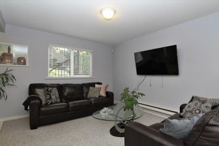 Photo 12: 20558 122 Avenue in Maple Ridge: Northwest Maple Ridge House for sale : MLS®# R2302746