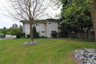 Photo 16: 20558 122 Avenue in Maple Ridge: Northwest Maple Ridge House for sale : MLS®# R2302746