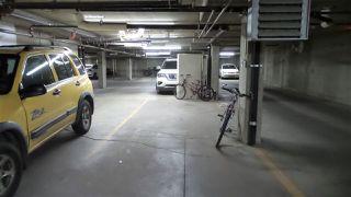 Photo 27: 501 10346 117 Street in Edmonton: Zone 12 Condo for sale : MLS®# E4136591