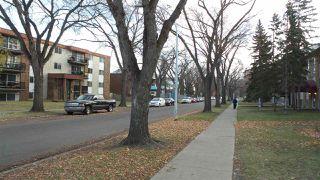 Photo 28: 501 10346 117 Street in Edmonton: Zone 12 Condo for sale : MLS®# E4136591