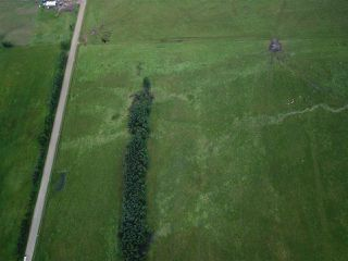 Photo 5: RR74 Twp 514: Rural Parkland County Rural Land/Vacant Lot for sale : MLS®# E4139300