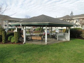 """Photo 19: 337 2451 GLADWIN Road in Abbotsford: Abbotsford West Condo for sale in """"Centennial Court"""" : MLS®# R2329915"""