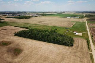 Photo 6: W4 R24 T49 S18 NE: Rural Leduc County Rural Land/Vacant Lot for sale : MLS®# E4141339