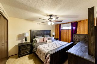Photo 22: 131 Evergreen Crescent: Wetaskiwin House for sale : MLS®# E4142590