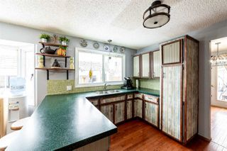 Photo 10: 131 Evergreen Crescent: Wetaskiwin House for sale : MLS®# E4142590