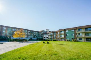 """Main Photo: 219 45598 MCINTOSH Drive in Chilliwack: Chilliwack W Young-Well Condo for sale in """"MCINTOSH MANOR"""" : MLS®# R2338811"""