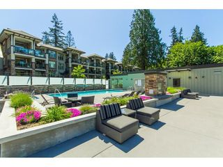 Photo 15: 202 15175 36 Avenue in Surrey: Morgan Creek Condo for sale (South Surrey White Rock)  : MLS®# R2356116