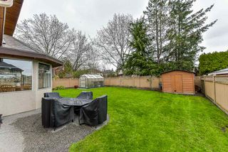 Photo 16: 10716 158 Street in Surrey: Fraser Heights House for sale (North Surrey)  : MLS®# R2357219