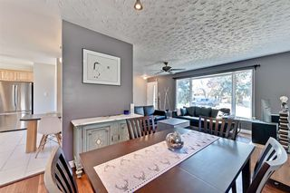 Photo 4: 15246 86 Avenue in Edmonton: Zone 22 House for sale : MLS®# E4152450