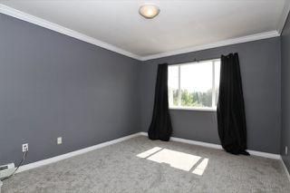 Photo 11: 20151 123 Avenue in Maple Ridge: Northwest Maple Ridge House for sale : MLS®# R2379969