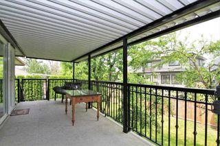Photo 19: 20151 123 Avenue in Maple Ridge: Northwest Maple Ridge House for sale : MLS®# R2379969