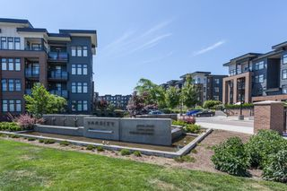 "Main Photo: 317 20068 FRASER Highway in Langley: Langley City Condo for sale in ""VARSITY"" : MLS®# R2383802"