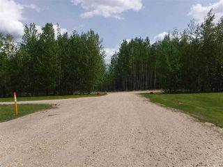 Photo 6: 49120 RR 70: Rural Brazeau County House for sale : MLS®# E4192836