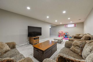 Photo 27: 15709 86 Avenue in Edmonton: Zone 22 House for sale : MLS®# E4203432