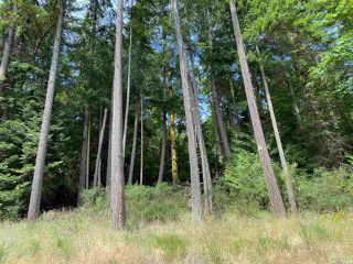 Photo 21: 20 MONTAGUE PARK Road: Galiano Island House for sale (Islands-Van. & Gulf)  : MLS®# R2477458