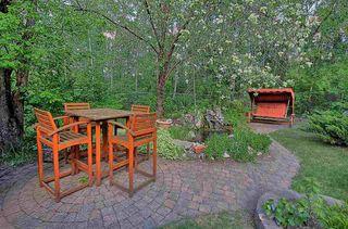 Photo 45: 16 Glacier Place: St. Albert House for sale : MLS®# E4217833