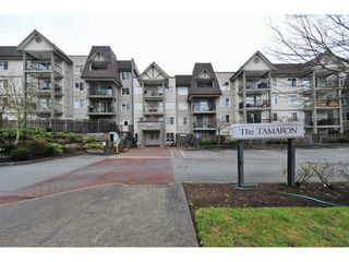 "Photo 13: 306 12083 92A Avenue in Surrey: Queen Mary Park Surrey Condo for sale in ""Tamaron"" : MLS®# F1430148"